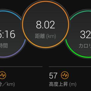 7月29日(大阪市8km)