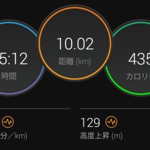 7月31日(大阪市10km)