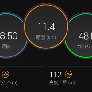 8月3日(大阪市11.4km)