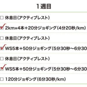 9月17日(大阪市9.5km)