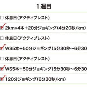 9月18日(大阪市20.2km)