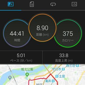 8月20日(大阪市8.9km)