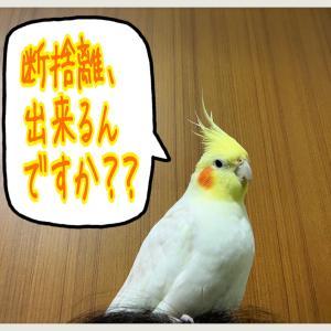(´・ω・`;)ぼちぼち断捨離始めなきゃ…(´・ω・`;)