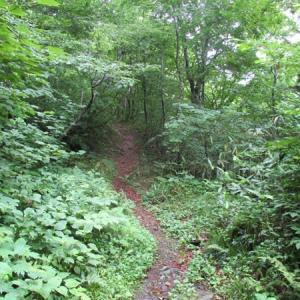 谷川岳の麓歩き