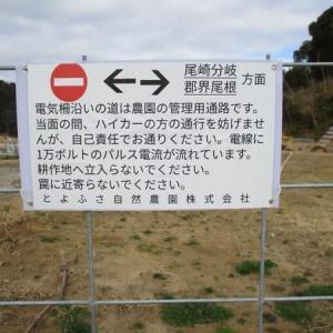 房総の山歩き(2021/2 笹郷山)