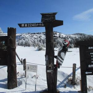 北八ヶ岳の雪山歩き その2
