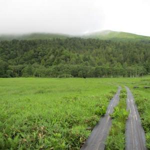 7月の尾瀬 至仏山