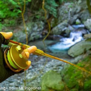 episode1838…【20210609】野生の岩魚たちは逞しがった♪。