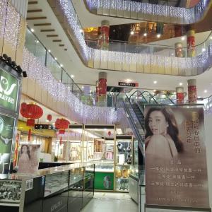 2019年12月 上海・蘇州(8 終) 隠れ舞庁 上海郊外 風俗への規制 新型コロナで舞庁は閉鎖 日本はこれから感染拡大 水際対策失敗したら次は封じ込め 日本売り