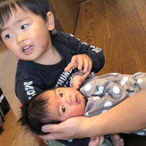 [コピー][コピー]お兄ちゃんは弟に育てられる。成長したねつぐちゃん
