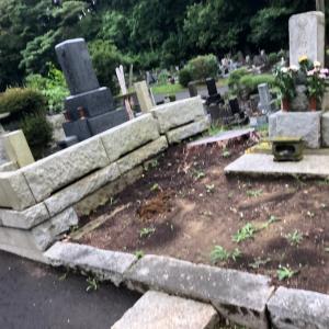 お墓参りに行く事は先祖への感謝と未来への繁栄