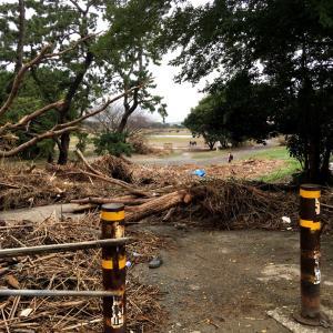 台風19号通過後1週間の多摩川の近況
