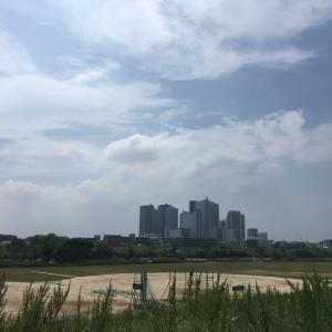 多摩川通信 vol.10