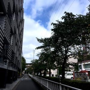 午後のポタリング 世田谷〜目黒〜杉並〜中野