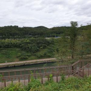 こんなところに遊覧船??? 金浦と仁川をつなぐ河川で遊覧船を見ました 京仁アラベッキル「경인아라뱃길」