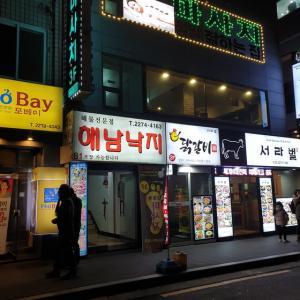 【東大門】 海南ナクチ「해남낙지」 日本でも有名になりましたね 辛くない手長ダコ料理のあるお店に行ってきました