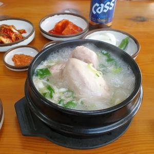 【龍仁】 ソウルノッガック参鶏湯「서울녹각삼계탕」 久々の参鶏湯 でも韓方、鹿の角入り????