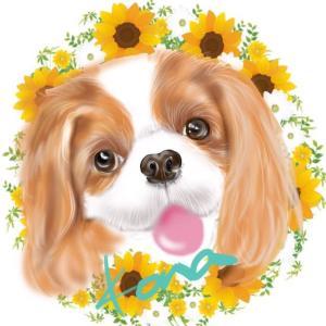 「ありがとう💛またね!」って言えるように。。。  犬のしつけ教室@アロハドギー