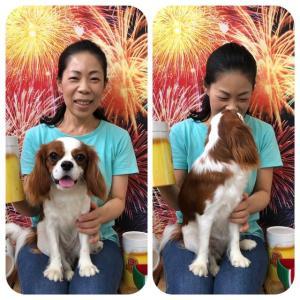 【パピーパーティー】(8/11)定員となりました。  犬のしつけ教室@アロハドギー