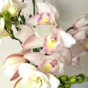 3月のお花