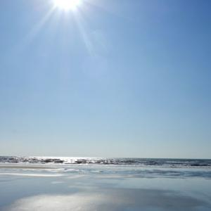 弾丸ゴア!アランボールビーチ24時間滞在でやりたいリストに挑戦【2019インドディワリ旅:ゴア編】