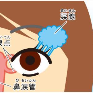 目薬の正しい使い方。