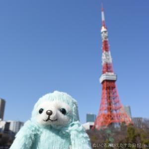 東京タワーのすぐそば、芝公園の梅!