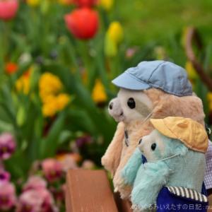 仕事をサボって芝公園で花とぬい撮り