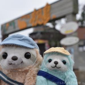 静岡県初島旅行1(天ぷら、いかの肝焼き)