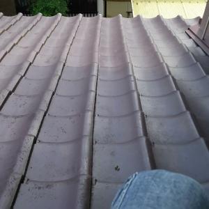 屋根の上にて、我が身を思う