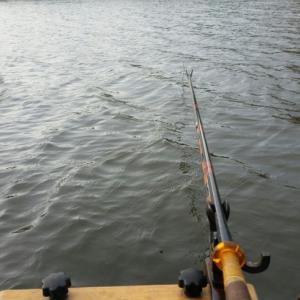 最近のパターン「へら釣りのはずが・・・」