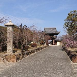 道明寺(藤井寺市) ・菅公が立ち寄り、第一次大戦の慰霊塔もある寺院