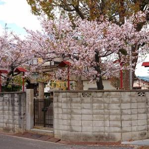 丹上菅原神社(堺市美原区) ・菅原道真公を祀る旧丹上村の氏神様