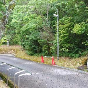 勝光寺(河内長野市) ・滝行とササユリで知られる寺院