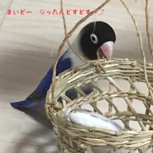 KAGO♡KAGO♡KAGO