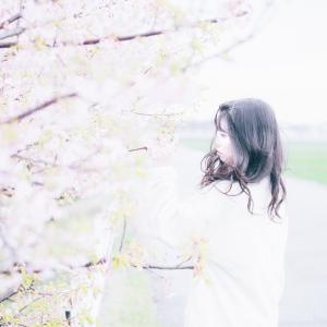 白山市美川の河津桜並木でポートレート撮影