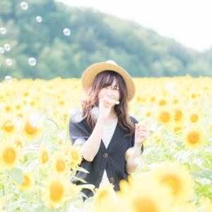 小松市瀬領町のひまわり畑が満開だったのでひまわりポートレートしてきました☆