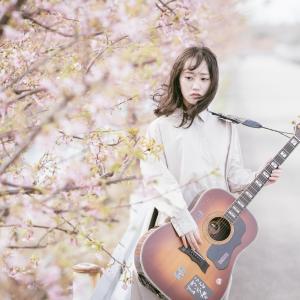 白山市西米光町(美川インター近く)の河津桜並木でポートレート撮影してきました