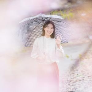 抜ける県道27号線(金沢井波線)沿いの山桜並木で桜ポートレート
