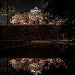 金沢城の夜桜ライトアップ2021を人があまり撮らない角度から撮ってみた