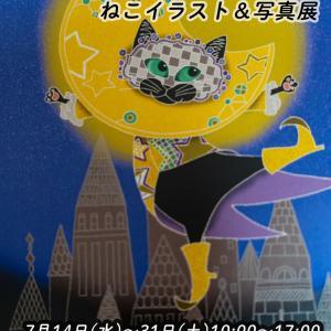 【夜の図書館3館同時開館連動企画】7月14日からねこイラスト&写真展を金沢市内で開催します