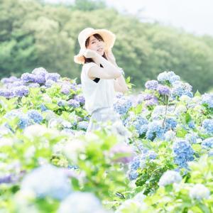 能登町の柳田植物公園でひさびさに紫陽花ポートレートしてきました