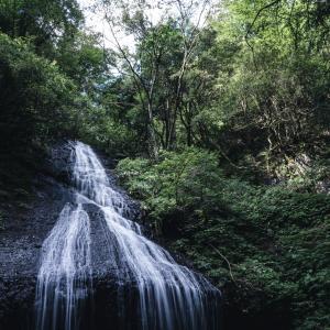 久しぶりの写活で白山市鳥越の蕎麦の花と三ヶ滝に行ってきました。