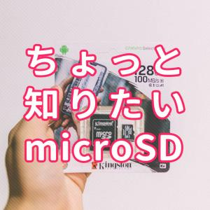 2000円で128GBのmicroSD買った。ところでSDってどうして保存できるの?