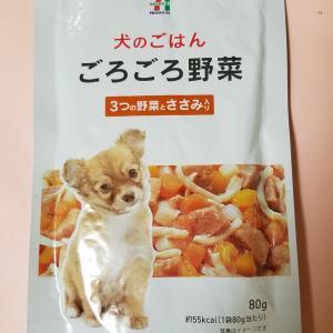 7月18日(火)朝食&おやつ&夕食&打ち合わせ&セラピー認定犬タグ