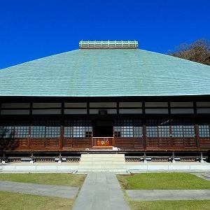 ●【鎌倉】カンザクラ咲く浄智寺から十二所の小道歩き・静かなお寺へ