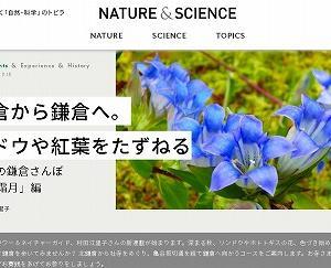 リンドウや紅葉をたずね北鎌倉から切通を経て鎌倉へ…NATURE&SCIENCEでご紹介★