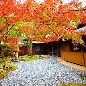【鎌倉】紅葉の一条恵観山荘…京の雅の建物の魅力を詳細レポ★