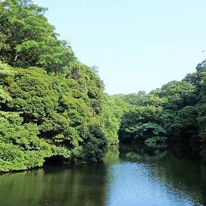 鎌倉湖畔でイワタバコのお花やすがすがしい滝との出会い★
