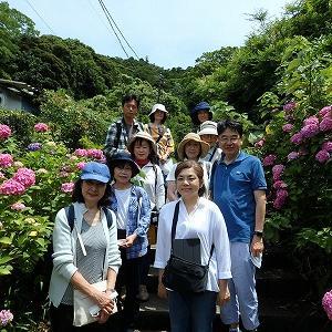 鎌倉湖でのびのび森林浴★アジサイもきれい^^